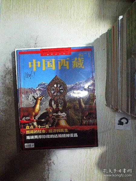 中国西藏 2011 1