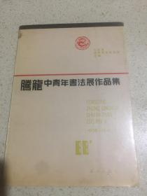 腾龙中青年书法展作品集
