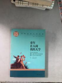 童年现货发货快! 在人间 我的大学 中小学生课外阅读书籍世界经典文学名著青少年儿童文学读物故事书名家名译原汁原味读原著9787533259563