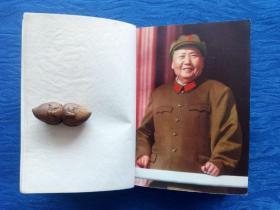毛主席诗词欣赏毛泽东林彪的书法艺术【插图精美】影像资料记录历史