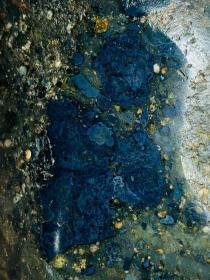 """陨石原石,高温坠落陨石原石,经典稀有彩色""""玉化蓝莓球粒陨,""""玉化七彩蓝莓陨石"""",极为稀有""""玉化七彩""""陨石,可遇不可求,精品河料陨石!,有弱磁性,276克,极为罕见,珍贵,稀有,精美,难得,可做镇馆之宝"""