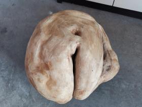 千年老根,千年老榆木根《少妇》《丰满的臀部》《生命之源》,大块头22斤重,可遇不可求,古色古香,雄浑大气,宏图大志,收藏佳品,可遇不可求的根雕艺术