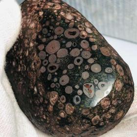 """陨石原石,极品""""稀有球粒陨石""""强烈,陨石原石,""""周末来临放漏""""球粒突出,金属感强烈,""""中国版肯尼亚橄榄陨石"""",""""纹路气印满纹陨石""""极为稀有,特别罕见,温润细腻,金球粒陨石,有微弱磁性,可遇不可求,珍贵,稀有,精美,难得,可做镇馆之宝"""