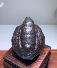 """陨石原石,撒哈拉沙漠的陨石,象形陨石""""金刚蚕蛹""""精品陨石""""神秘金刚蚕蛹""""陨石,""""天外来客神秘奇石陨石"""",万里挑一,百年难得一遇,极为稀有,非常漂亮,极为稀有罕见,可遇不可求,陨石中的极品、珍品、孤品,可做镇馆之宝"""