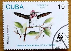 邮票,老邮票,蜂鸟熊猫邮票,古巴邮票1992年熊猫徽WWF鸟类蜂鸟销 外国邮票,非常罕见,稀有,珍贵,难得, !正品保真,非常稀有难得,意义深远,可谓古邮票收藏的珍品,孤品,神品