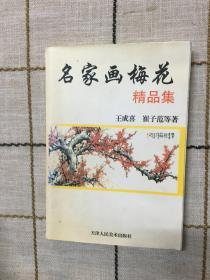 名家画梅花精品集