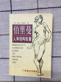 伯里曼人体结构绘画