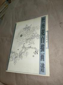 牡丹花白描画谱