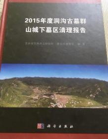 2015年度洞沟古墓群山城下墓区清理报告