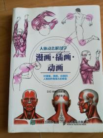 人体动态解剖学【漫画 插画 动画】