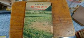 稻的病虫害—日文版