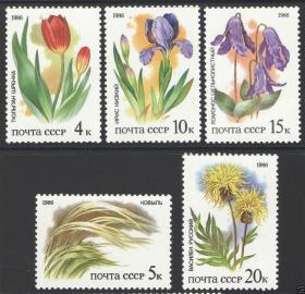【苏联邮票 1986 草原植物 施伦克郁金香,针矛,矮鸢尾 5全)邮票收藏集邮】