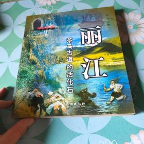 丽江:茶马古道的活化石