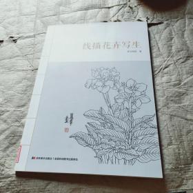 线描花卉写生