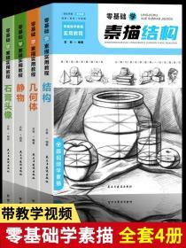 零基础学素描实用教程:结构+静物+几何体+石膏头像(套装共4册扫码观看教学视频)