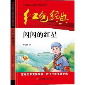 红色经典—微山湖上 中国红色儿童文学经典系列 小学生四五六年级课外书