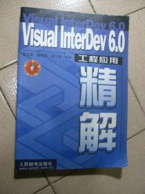 VISUAL INTERDEV 6.0工程应用精解