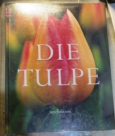 德文原版:《DIE  TULPE》 ( 郁金香) 精装本。精美摄影册。里面都是郁金香的照片。