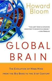 Global Brain: The Evolution of Mass Mind from the Big Bang t