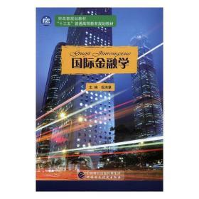 发货快! 国际金融学 祝洪章 主编 中国财政经济出版社
