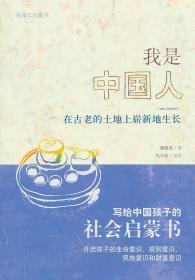 发货快! 我是中国人—在古老的土地上崭新地生长 蒋瑞龙 著 广