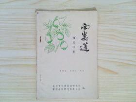 西番莲栽培技术