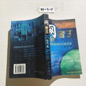 网者王——中国互联网创业者档案