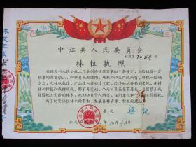 林业文献 1963年中江县人民委员会林权执照(县长签署)