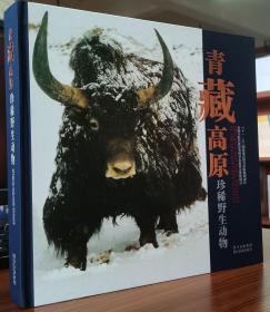 青藏高原珍稀野生动物