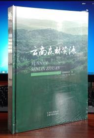 云南森林资源