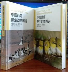 中国西南野生动物图谱:鸟类卷(上下册)【正版全新书籍】