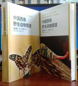 中国西南野生动物图谱:昆虫卷 (上下册) 【精装正版现货】