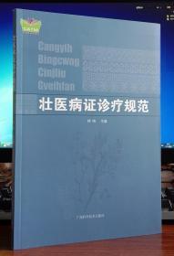 壮医病证诊疗规范/中国东盟传统医药文库