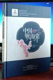 中国秋海棠