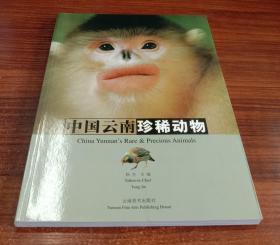 中国云南珍稀动物