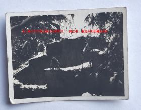 民国老照片:民国上海公园雪景—— 【上海江宁区第五联合诊所医生——陈公朴、振莹夫妇旧藏系列】