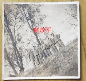 老照片:解放军【桐阴委羽系列】