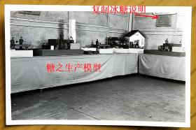"""老照片:1951年上海市土产展览交流大会,食料馆——上海市糖商业同业公会,糖部——糖之生产模型,墙上还挂有""""复制冰糖说明""""。——简史:与上海市糖商业同业公会有直接渊源关系的同业组织是1825年创立的点春堂,亦称上海南市糖业公所。1930年成立了正式的上海市糖商业同业公会。【上海市糖商业同业公会——旧藏系列】"""
