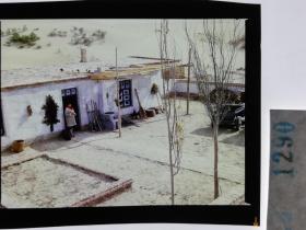 1290  电影明星 美女 剧照反转片  《砂砾》  新疆民居