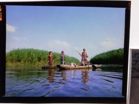 1295  电影明星 美女 剧照反转片  《砂砾》  维族少女泛舟芦苇荡