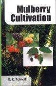 Mulberry Cultivation