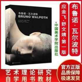 布鲁诺瓦尔波特 应金飞 中国美术学院出版社