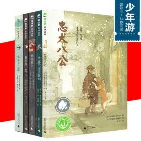 正版 全5册魔法象·故事森林少年游:忠犬八公 马克的计划 地堡日记 我想要一片天 非凡十二岁8-12-14岁儿童文学儿童课外书
