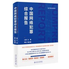 库存新书  中国网络犯罪综合报告