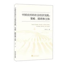 中国农村的社会经济实践:策略、障碍和主体  何宇飞 武汉大学出版社