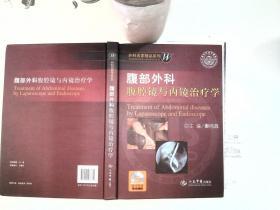 腹部外科腹腔镜与内镜治疗学