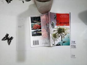 菊花栽培与装饰造型