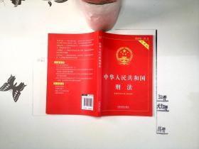 中华人民共和国刑法实用版(根据刑法修正案九全新修订 含相关立法解释)+-