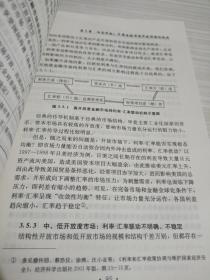 金融市场动态开放中的利率-汇率联动:以中国为例的研究
