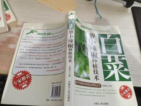 白菜 萝卜辣椒种植技术